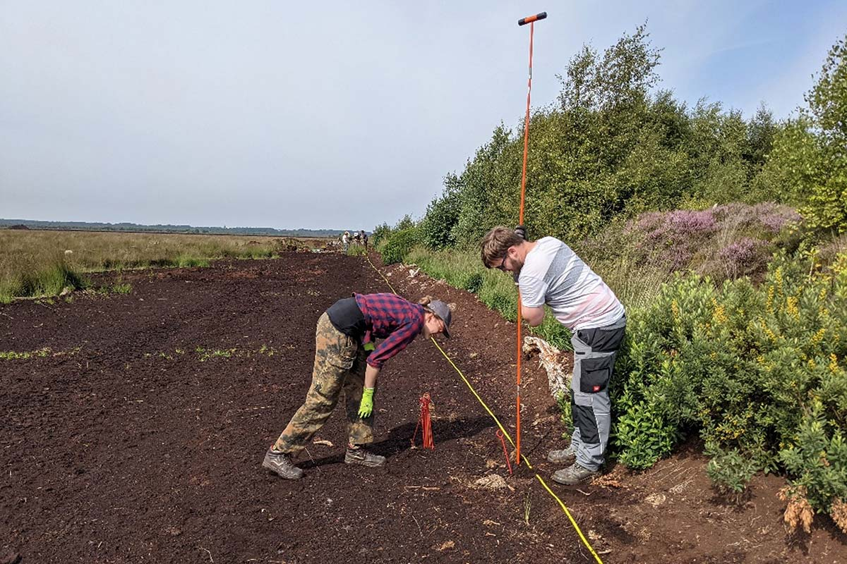 Zwei Menschen arbeiten mit Sondierstange im Moor