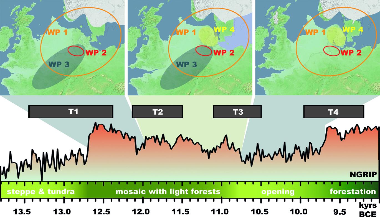Spätpleistozäne und frühholozäne Entwicklungen in Nordeuropa in Verbindung mit unseren Transformationsphasen (T1-4) und den geographischen Schwerpunkten der vier verschiedenen Arbeitspakete der Phase 2