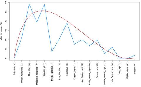 Diagramm Abnahme der Frequenz eines HLA-Allels vom Paläolithikum bis zur Neuzeit