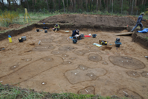 Excavation at Dobbin 2019 in autumn 2019