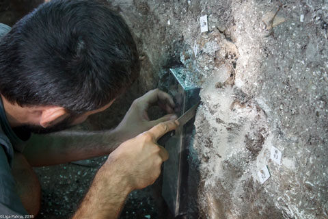 "Sampling at the excavation ""Riņņukalns"" in Latvia"