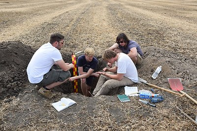 Investigation of a pedological trench in Maidanetske