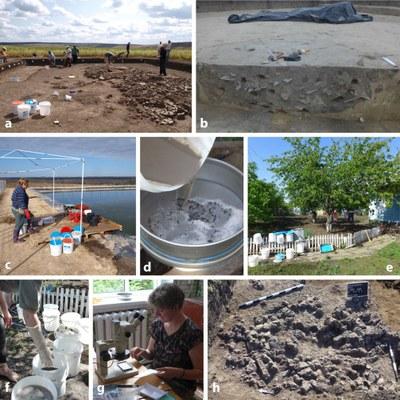 Archaeo-botanical fieldwork in summer 2017