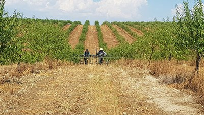 Monte da Contenda is a ditched enclosure site currently located under an olive tree and almond tree plantation