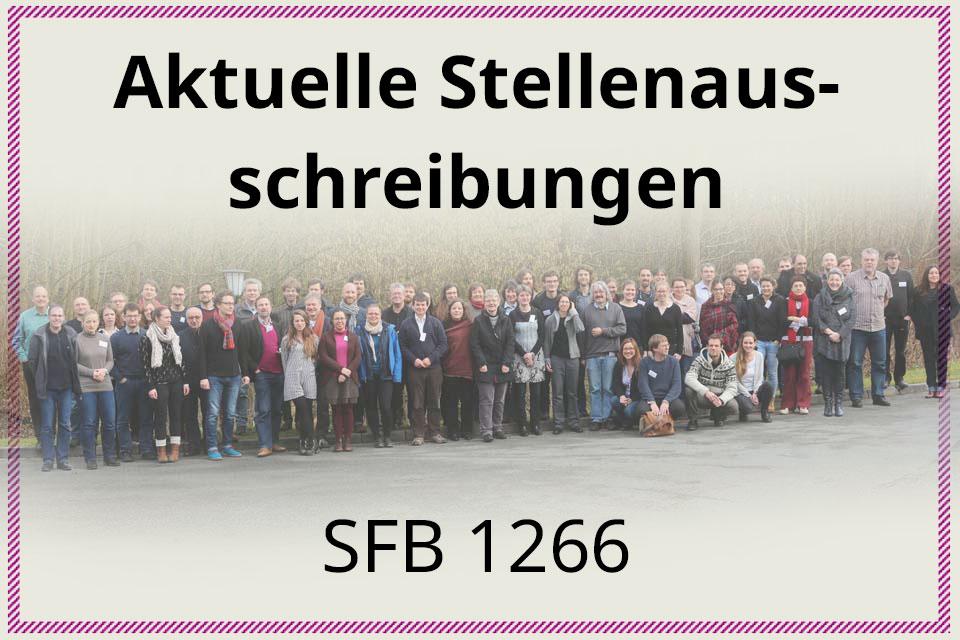 Stellenausschreibungen SFB1266
