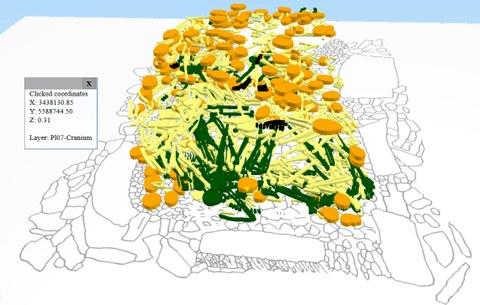 3D Knochenlagen