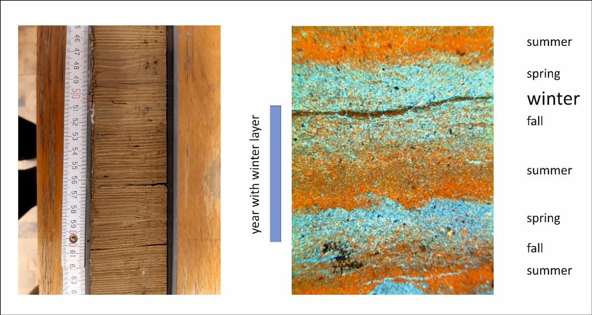 Fotografie eines Kernabschnittes und ein Ausschnitt
