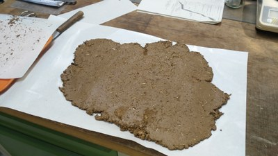 Basic material of Löss (site Maidanestke, Ukraine)